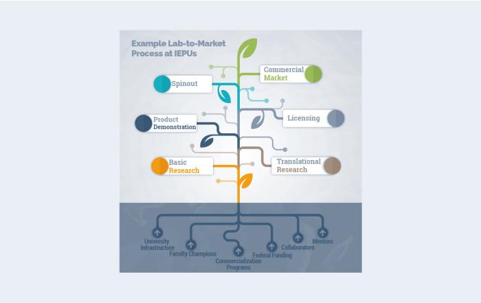 lab-to-market vine image
